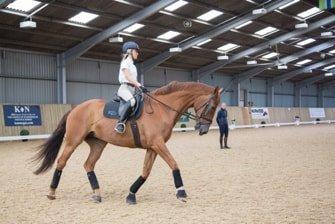 Prestige Equestrian Centre 1
