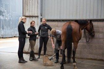 Summerhouse Equestrian Centre 6