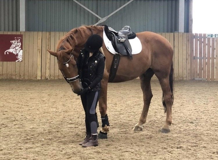 Riding Tuition 2