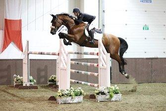 Prestige Equestrian Centre 3